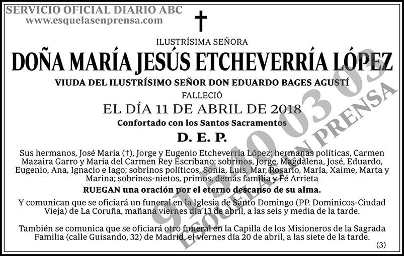 María Jesús Etcheverría López